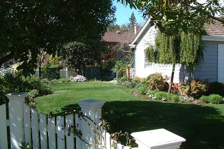 Traditional Yard